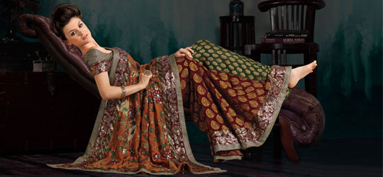 Innovation of Indian and Pakistani Sarees