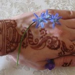 Latest Indian Mehndi Designs 2010