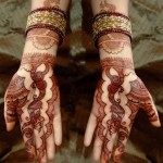 Party Henna Mehndi Designs