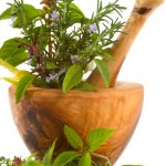 Best Herbs for Weight Loss: Can It Realy Help You?