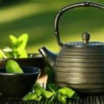 Green Tea for Weight Loss: Green Tea You'll Find
