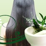 Dry Hair Care with Home Remedies: Hairs Treatment with Nature