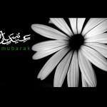 Eid-ul-Azha SMS: Awesome Funny Eid SMS