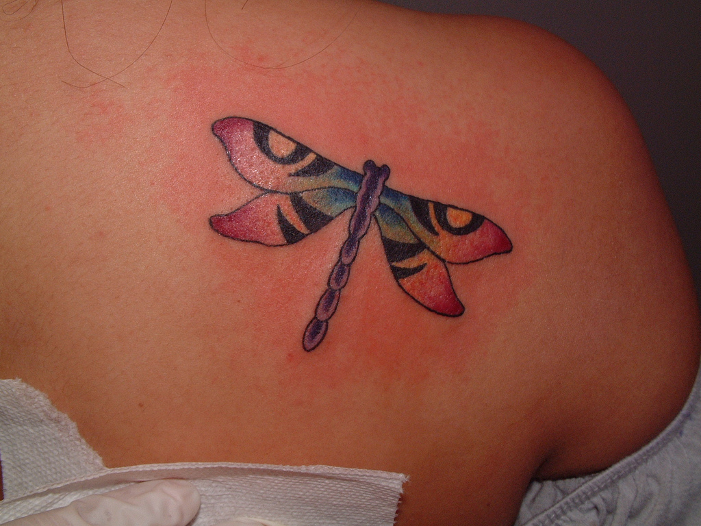 Interesting dragonfly tattoo design for girls for Waxing over tattoo