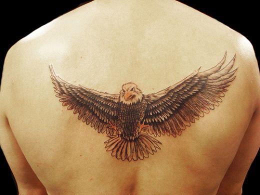 bald eagle tattoo. Eagle Tattoo Design
