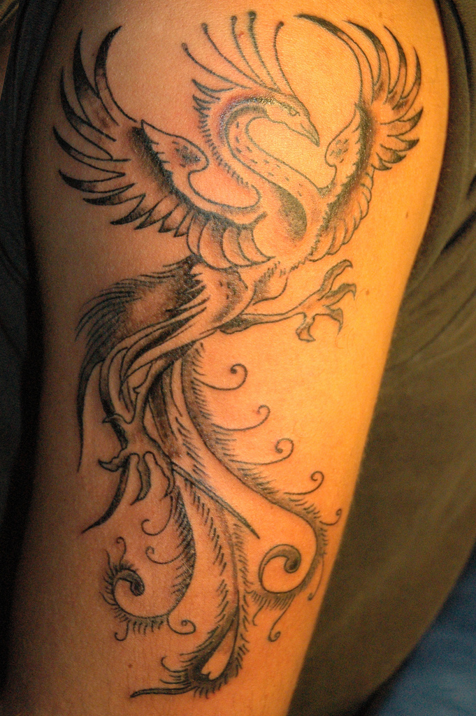 Phoenix Tattoo For Arm Yusrablog Com