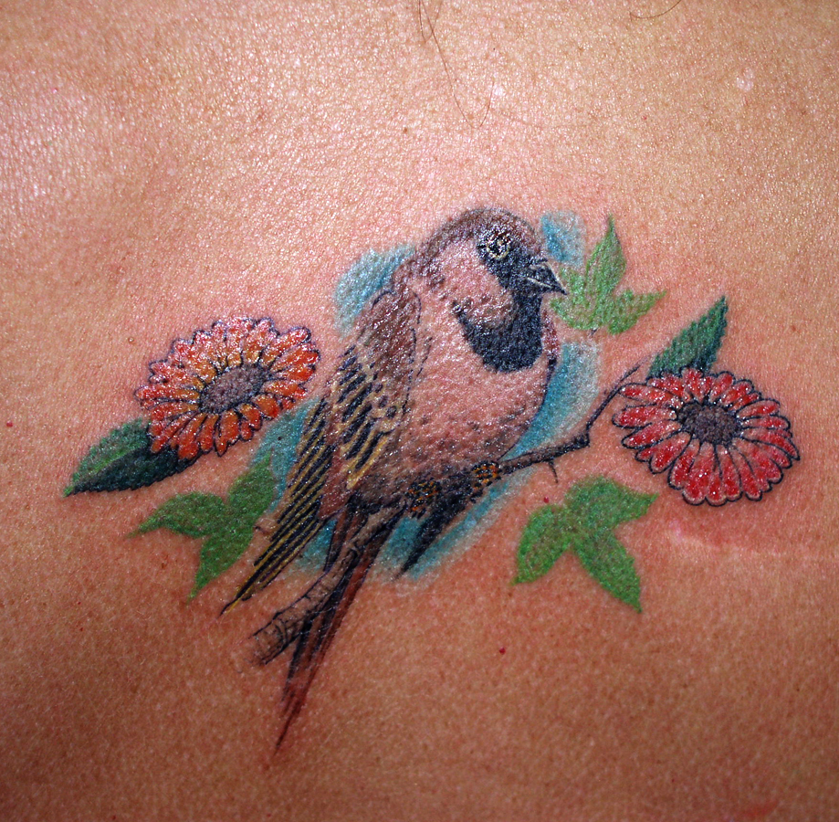 Cute sparrow tattoo design for younger girls 2011
