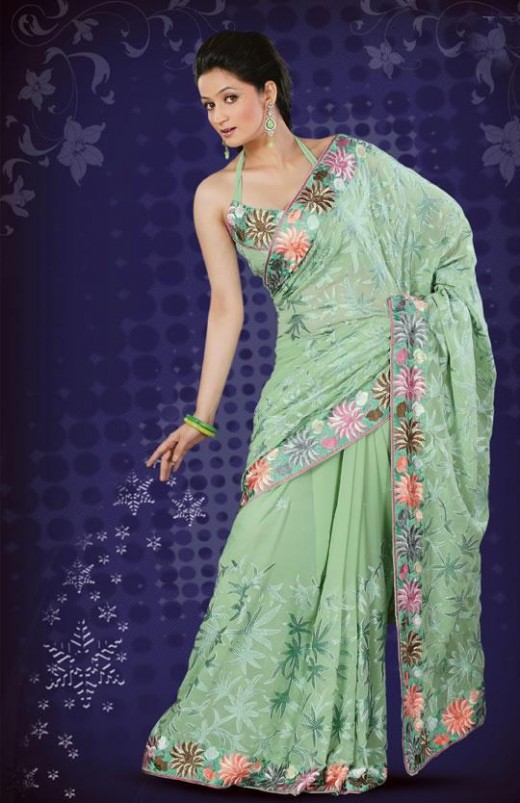 Exclusive Party Saree Pattern for Women 2011 520x803 - 2011 Party Wear Sarees Designs Collection
