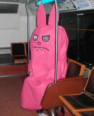 Pink Animal Photo