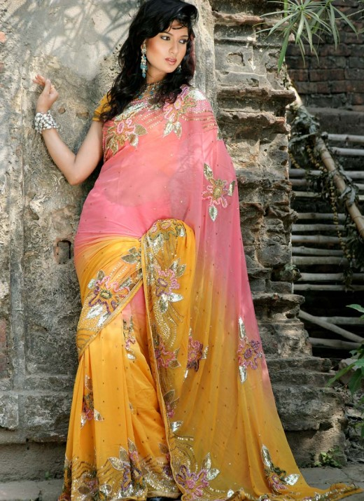 Saree with Beautiful Embroidery for Winter 2011 520x715 - 2011 Party Wear Sarees Designs Collection