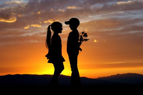 Silhouette Photography: 25 Wonderful Examples