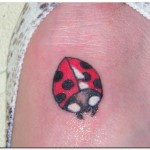 All About Ladybug Tattoo Designs