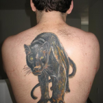 Panther Tattoos Meaning: Body Art