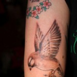 Traditional Meaning of Sparrow Tattoos
