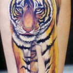 The Meaning Behind Tiger Tattoos