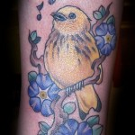 Bird Tattoos and Their Meanings