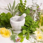 Herbs Used For Weight Loss: Lose Weight With Herbs